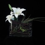Birchwood Lillies - Item #sm105
