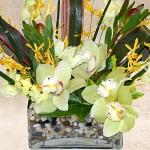 Fresh Orchid Arrangement