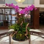 Tropical Paradise Centerpiece